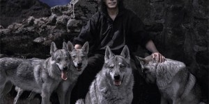 Steve Hackett | Wolflight